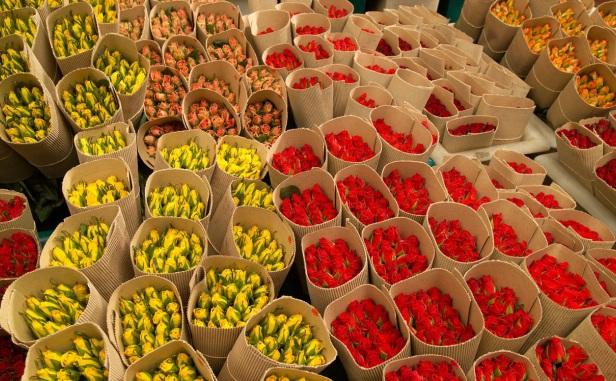 76137_flowers4